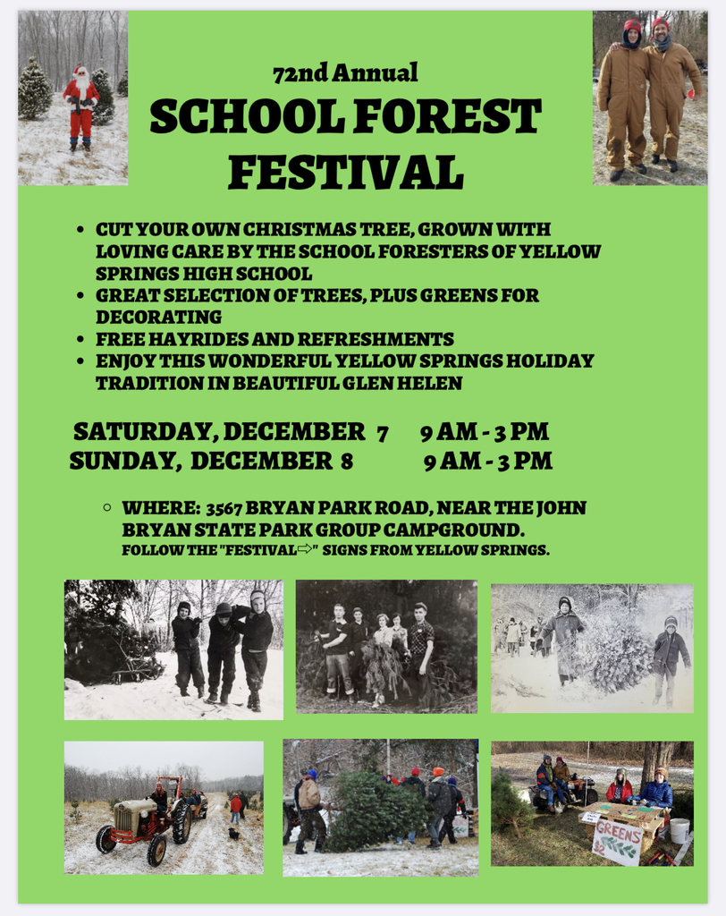 School forest Christmas tree sale flyer